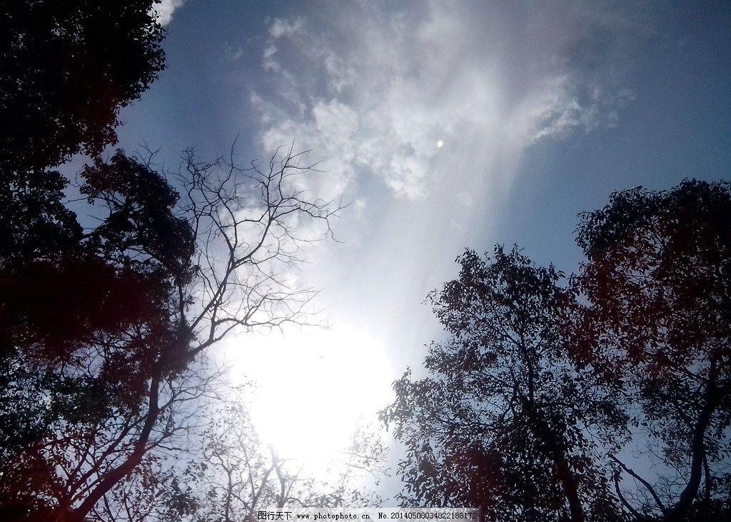仰望天空的图片