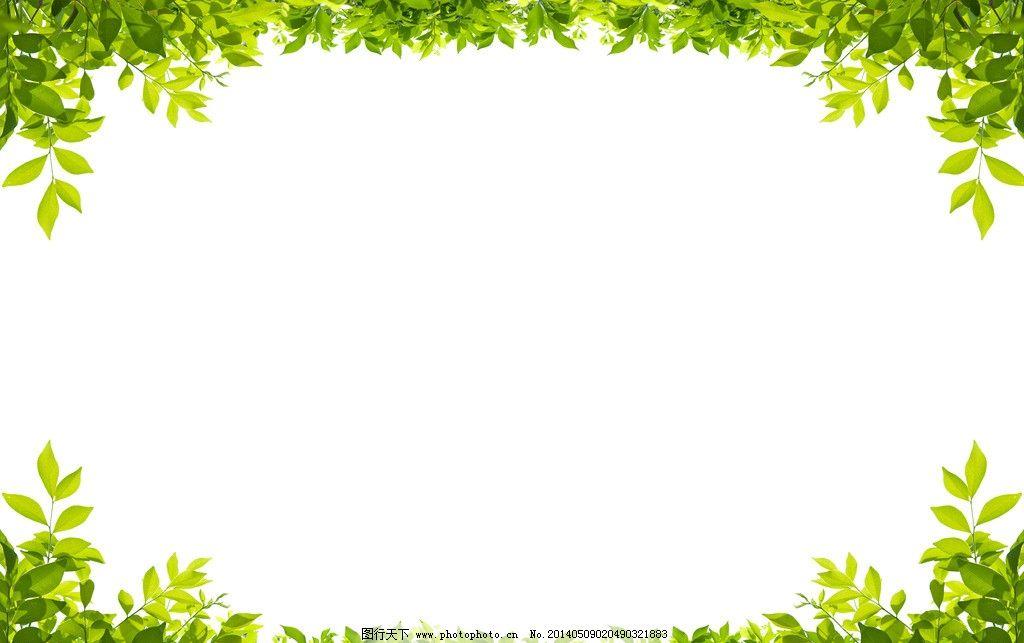 绿叶 树叶 叶子 相框 自然 绿植 植物 边框相框 底纹边框 设计 300dpi