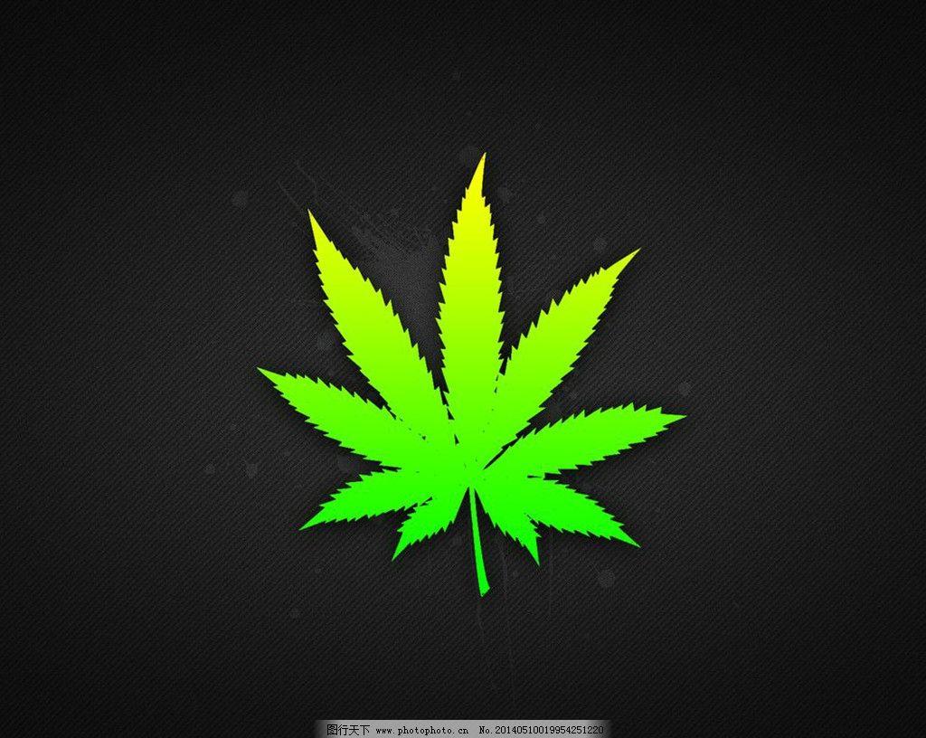 麻叶壁纸 大麻 麻叶 叶子