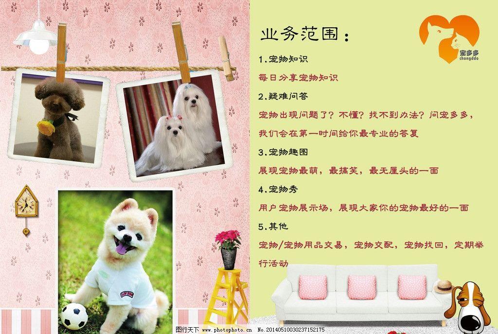 宠物宣传页 宠物 黄色 底纹 小狗 排版 dm宣传单 广告设计模板 源文件