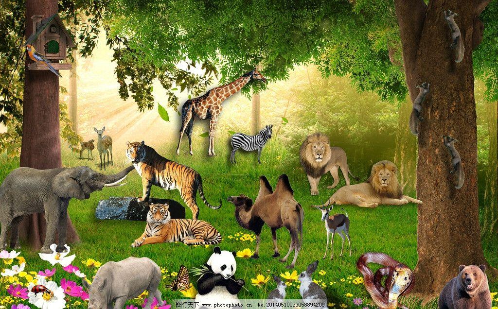 森林动物图片_其他_psd分层