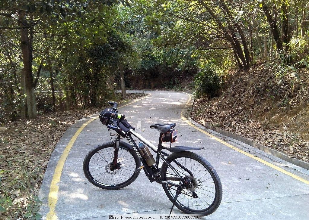 自然绿道轻松骑行图片