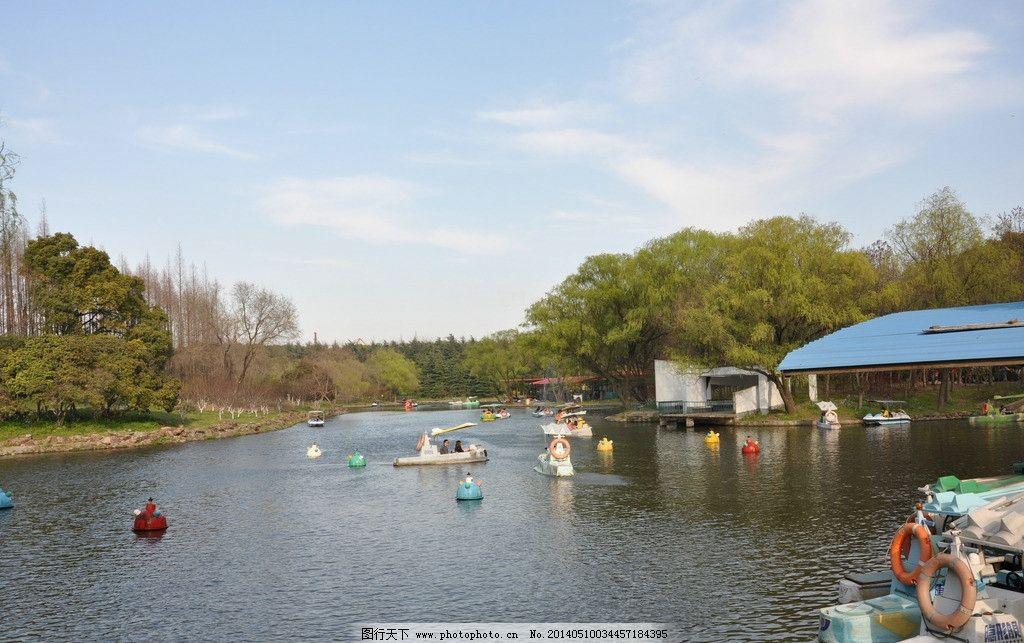 划船图片 划船 游船 船只 湖面 人 水景 森林公园 蓝天 树森 绿色