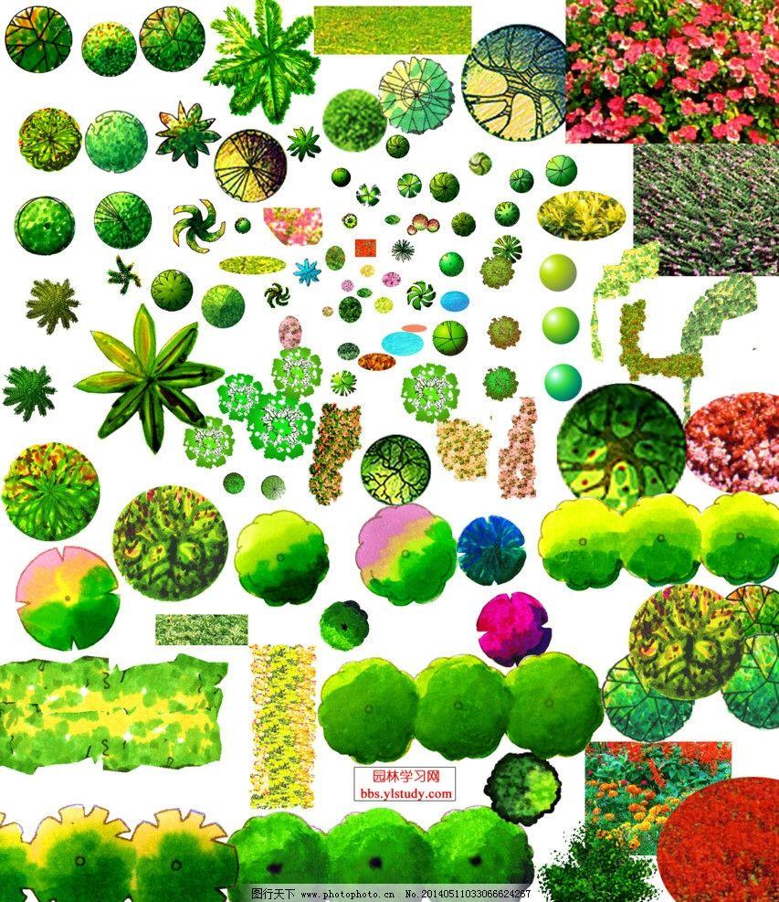 植物平面psd 植物 素材 psd 平面 乔灌木 psd分层素材 源文件 72dpi