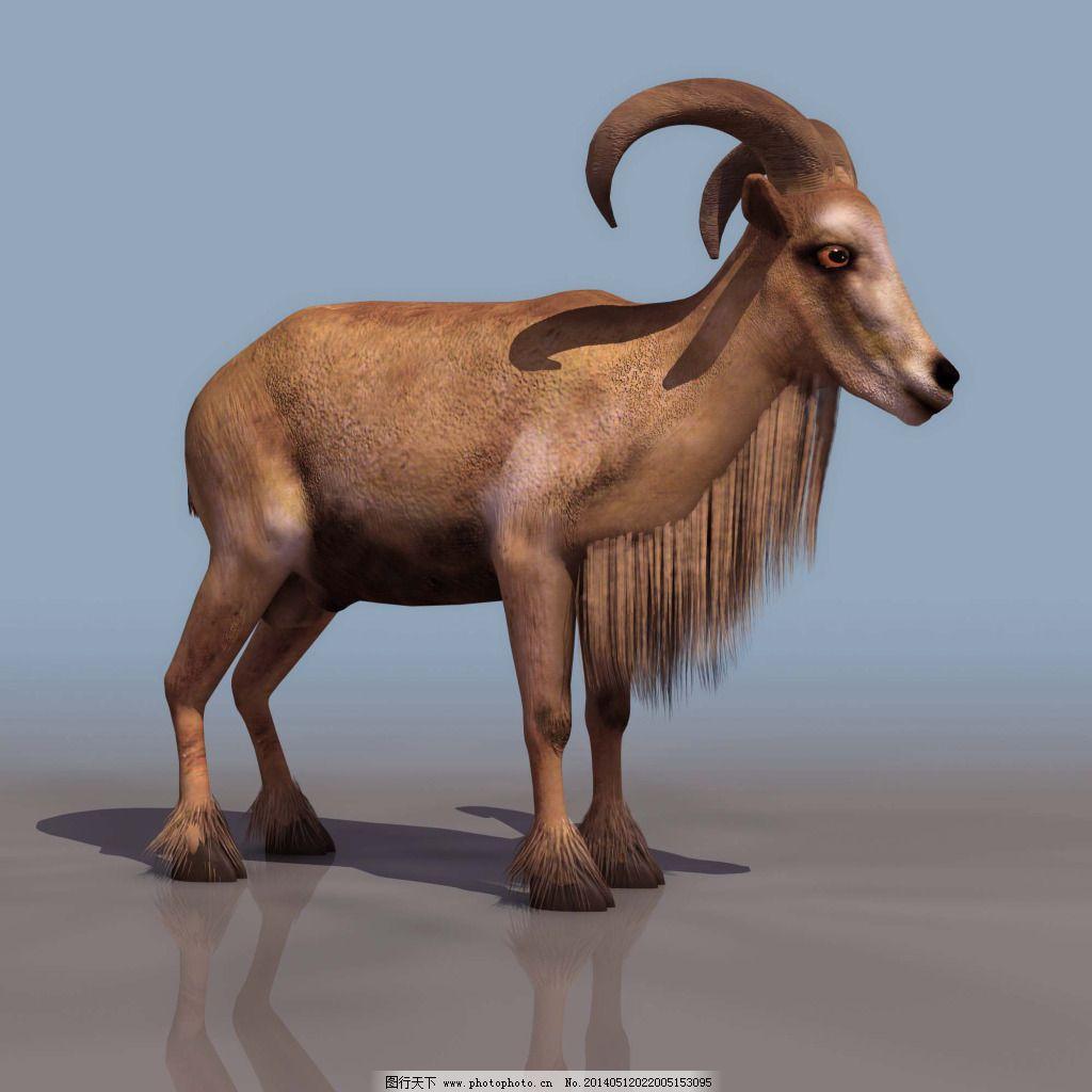 羚羊3d模型免费下载 max 动物 羚羊 羚羊3d模型 羚羊 动物 max 3d模型