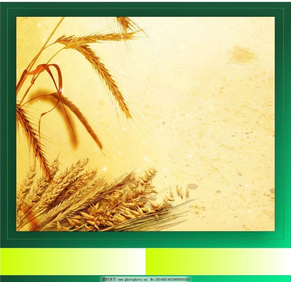 小麦 五谷 杂粮 底纹 边框 图案 设计 背景 色彩 线条 素材 矢量素材