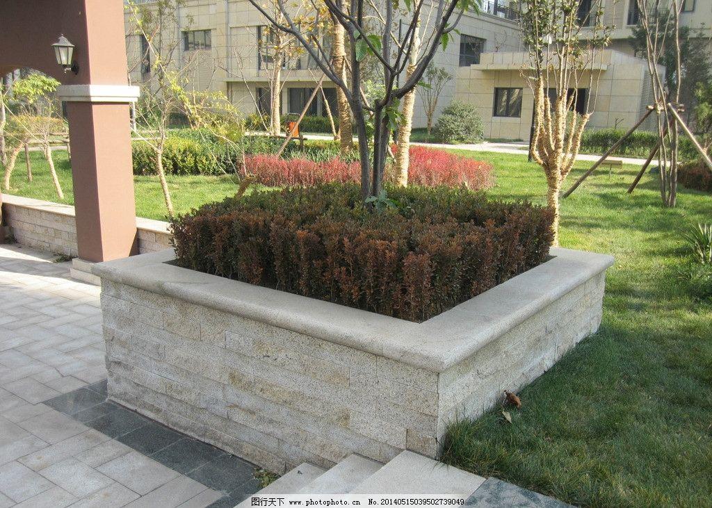 居住区 绿化 树木 草坪 树池 社区景观绿化 园林建筑 建筑园林 摄影 1