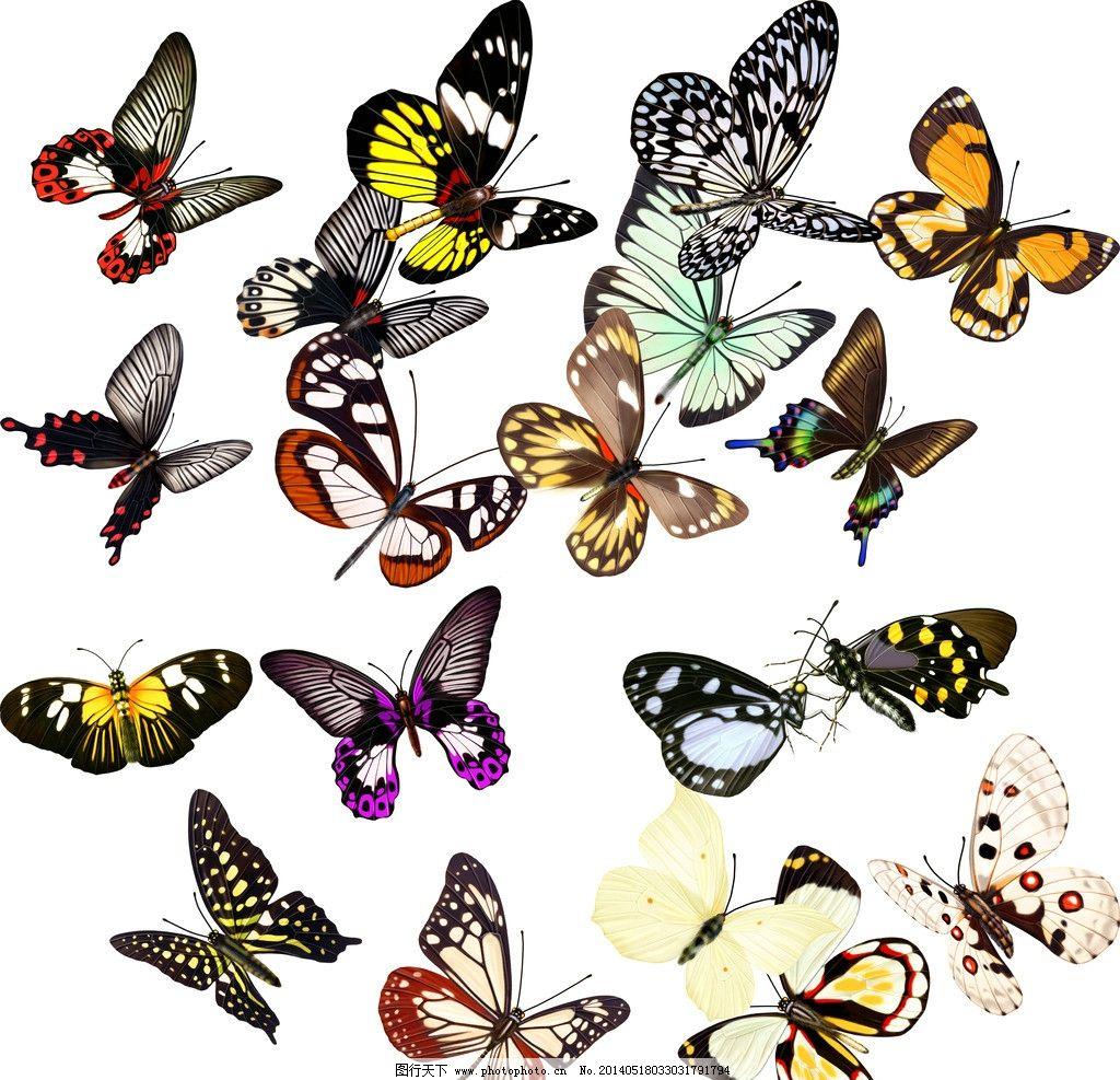 黄色手绘蝴蝶背景