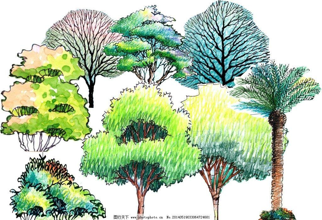 手绘彩铅植物素材 景观素材 景观设计 效果图素材 源文件