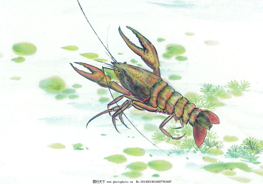 海洋生物免费下载 动物 海洋生物 龙虾 设计 手绘画 水墨画 动物 海洋