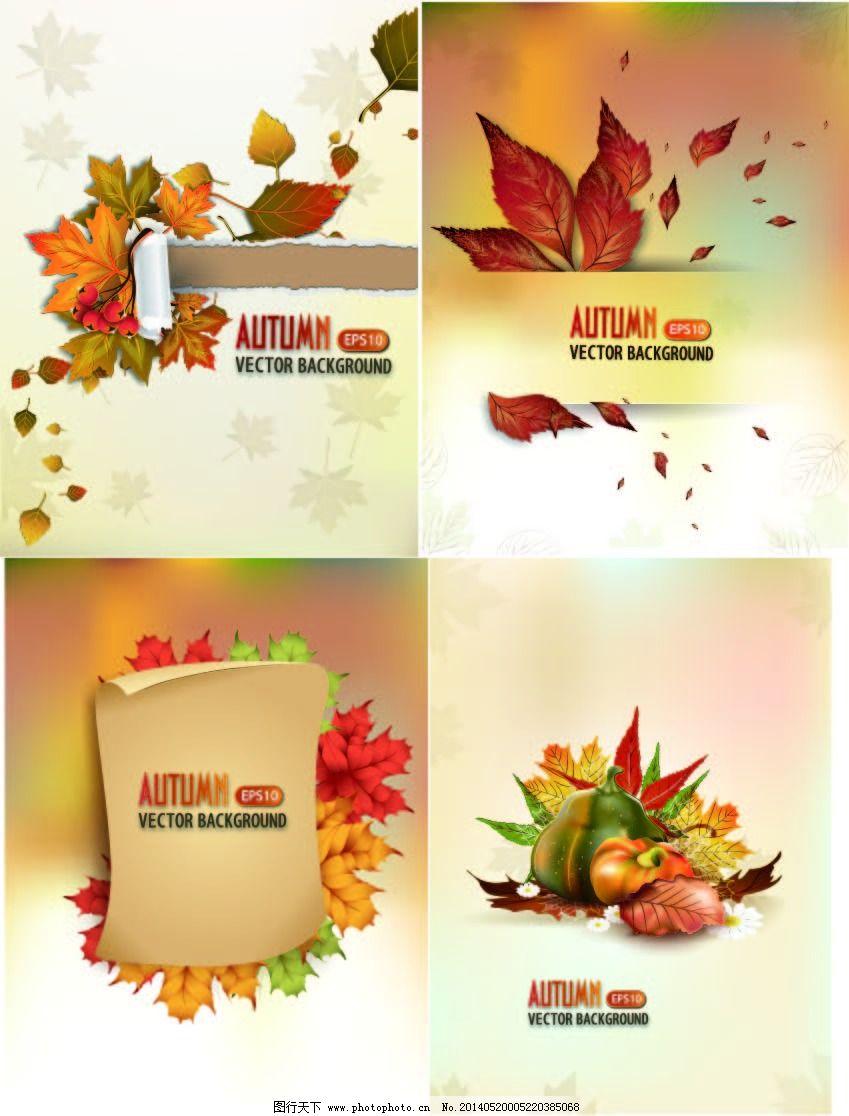 秋天的枫/秋天的枫叶