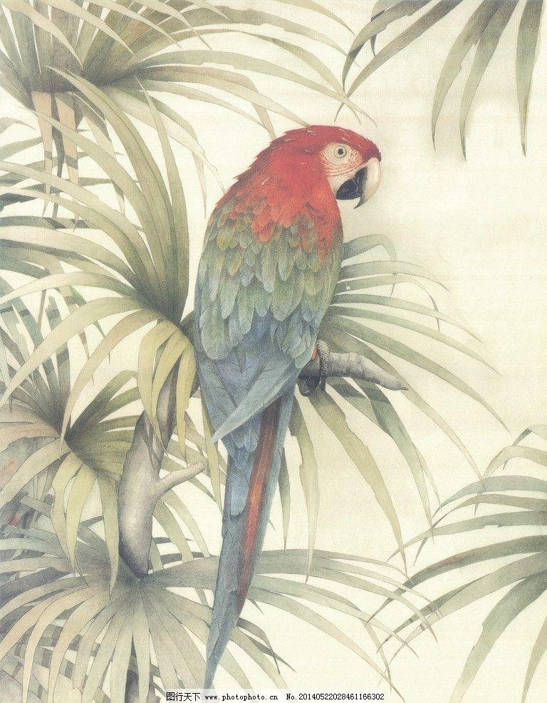 鹦鹉 花鸟画 鹦鹉工笔画 巴哥 鸟类绘画 生物世界 无框画 装饰画 挂画