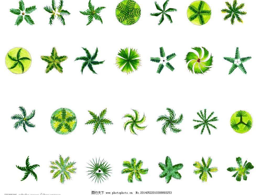 树木平面素材图片