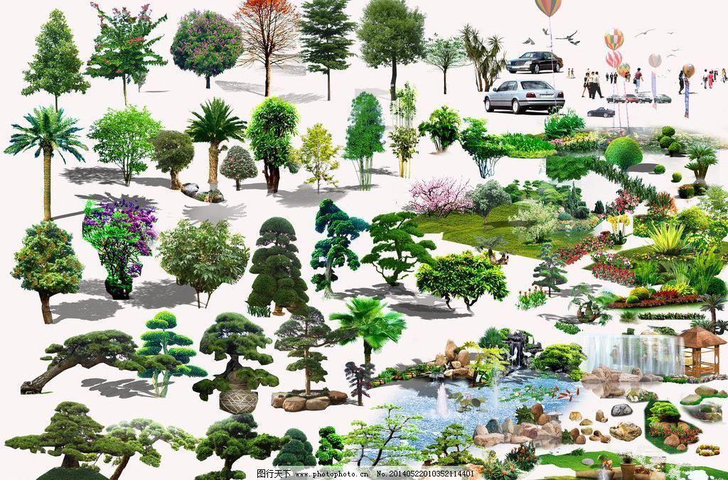 环艺树 树苗 树木图片 常绿乔木 园林装饰树木 景观 松树 柳树 桂花树