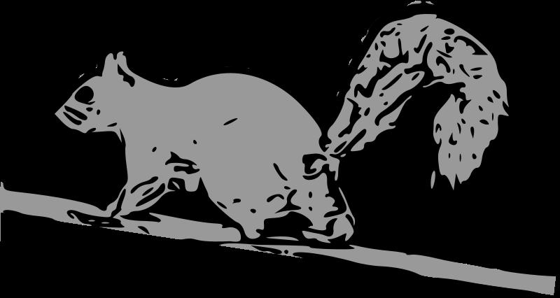 免费 松鼠      松鼠 松鼠矢量矢量艺术动物 松鼠剪影矢量艺术 松鼠