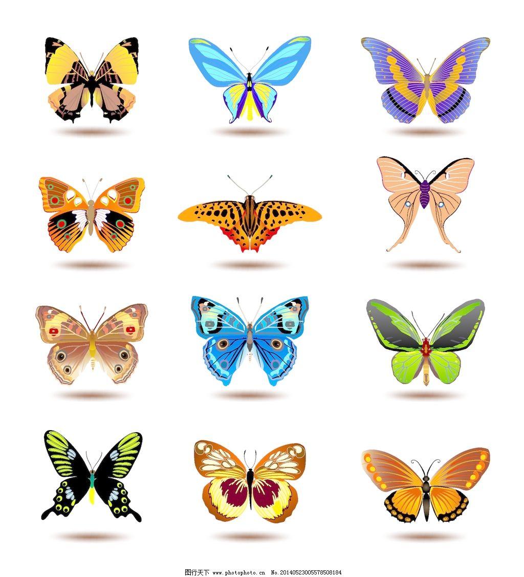 蝴蝶 蝴蝶卡通图片 蝴蝶 蝴蝶和鲜花的剪贴画 美丽的蝴蝶设计eps的