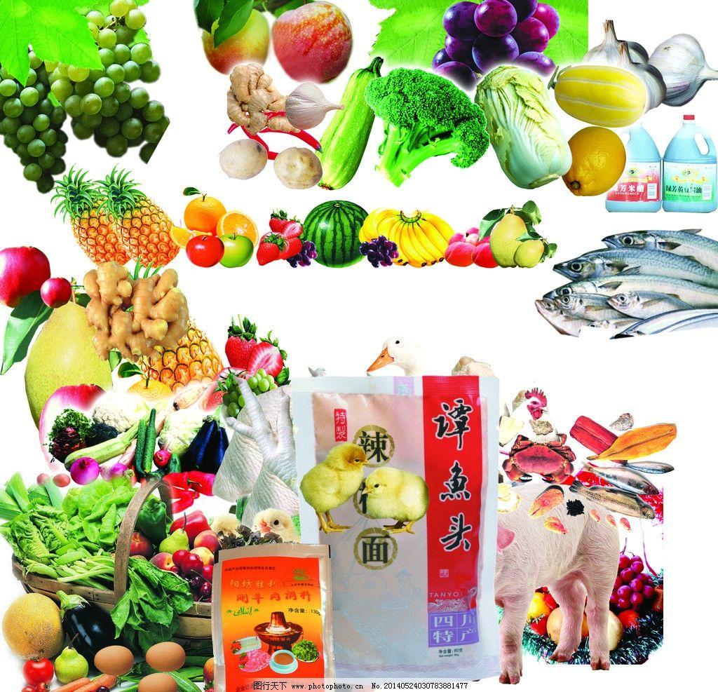 各种食品水果蔬菜 各种食品 水果 蔬菜 鱼 调料 猪 动物 设计 国内