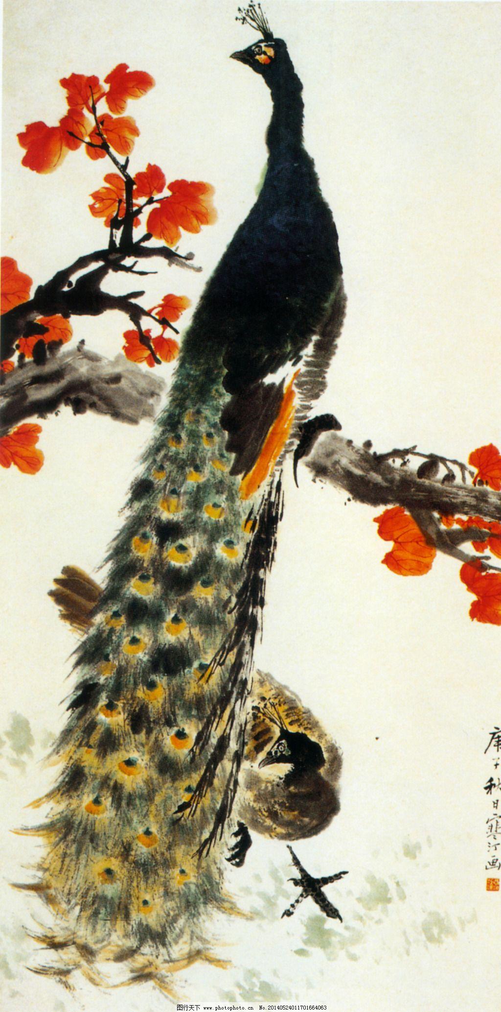 公免费下载 工笔画 花鸟画 中国画 装饰画 孔雀丹青 装饰画 中国画 花