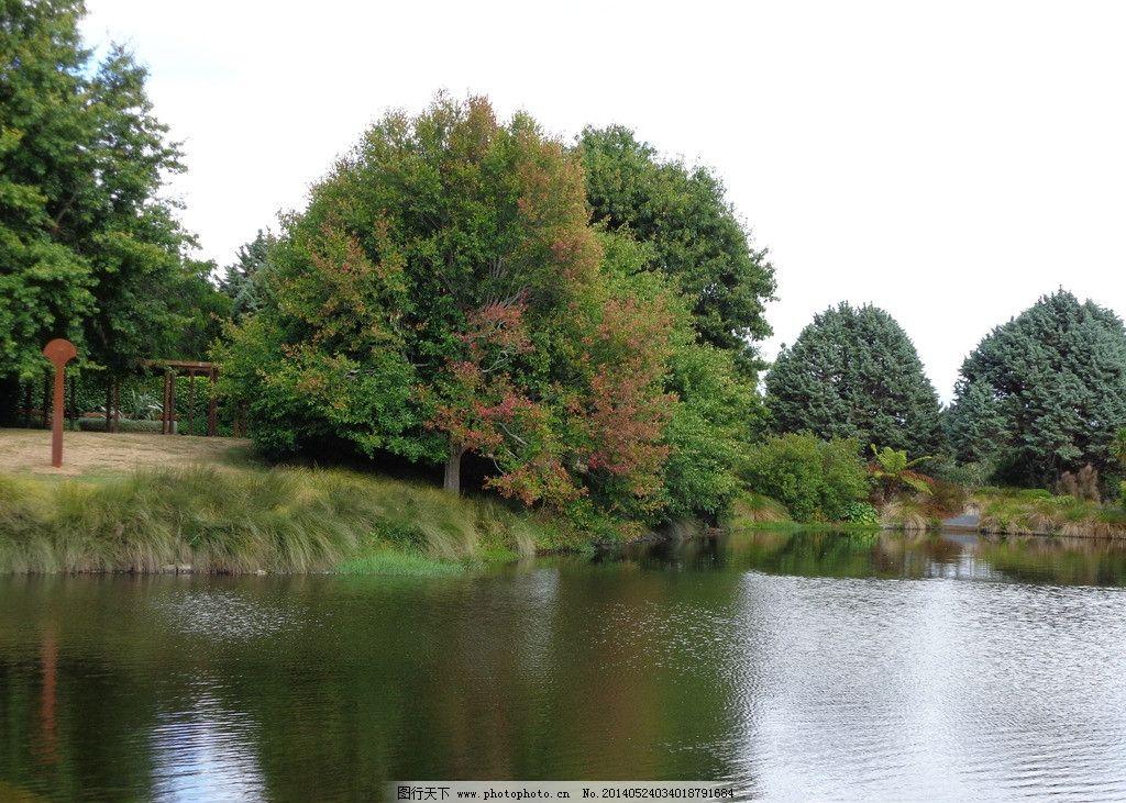 新西兰风景 蓝天 白云 绿树 绿地 草地 湖塘 湖水倒影 园林 新西兰