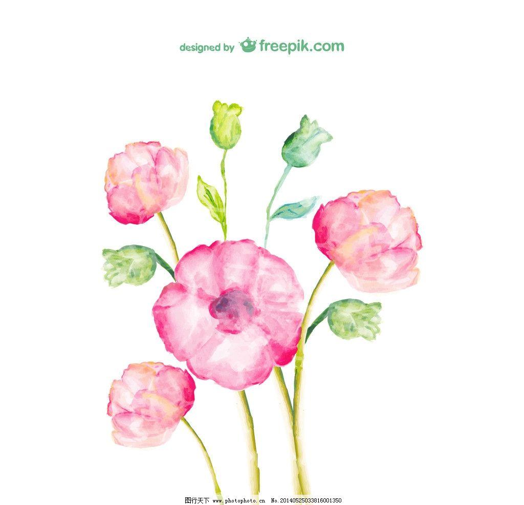 卡 花的海报 彩色 春天 壁纸 水彩 自然 明信片 开花 植物 盛开 手绘