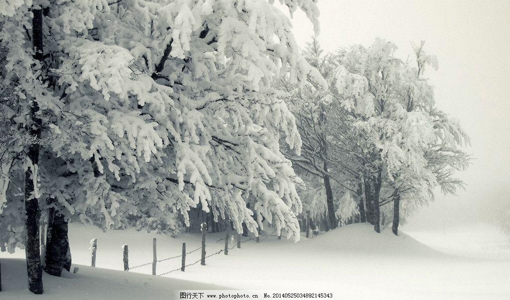 冬天大雪高清壁纸图片