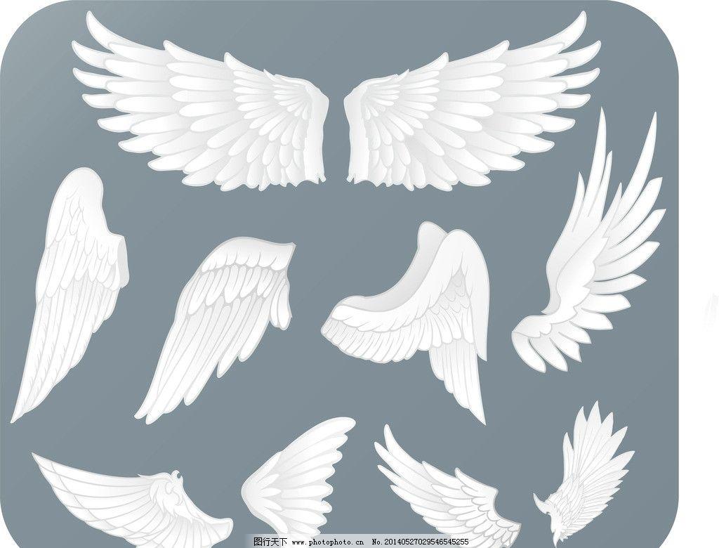 翅膀设计 翅膀素材 装饰翅膀 鸟类翅膀 鸟儿翅膀 纹身图案 手绘 矢量