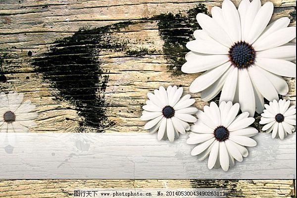 ppt/粗糙古朴木板淡雅的小菊花背景ppt模板