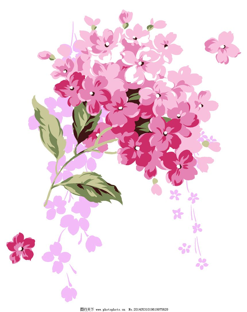手绘鲜花免费下载 bmp 白底 手绘 鲜花 白底 手绘 鲜花 bmp 图片素材