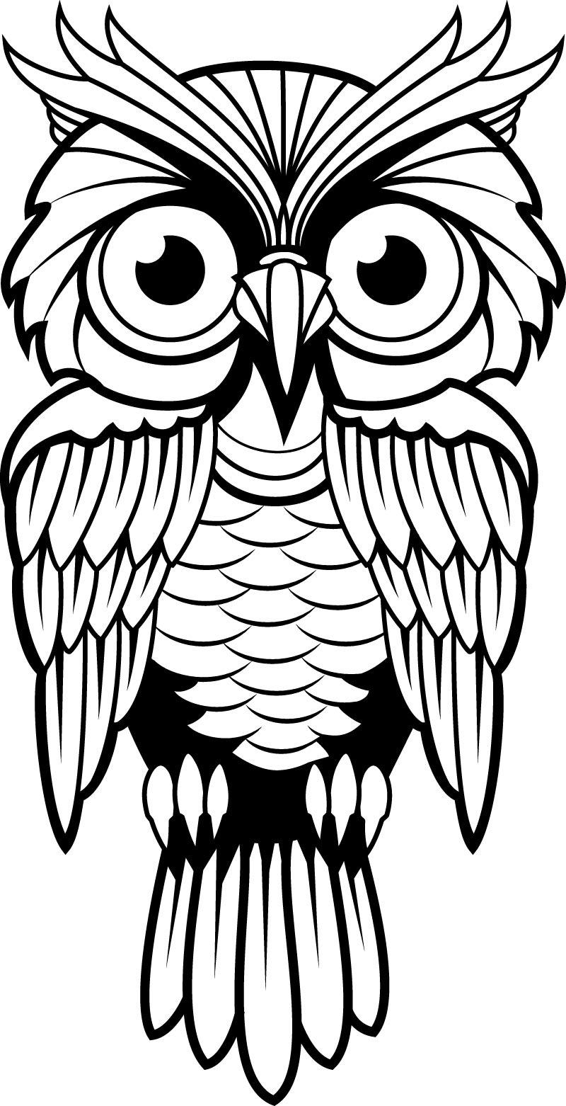 手绘卡通猫头鹰免费下载 动物 猫头鹰 手绘 素描 手绘 素描 动物 猫头