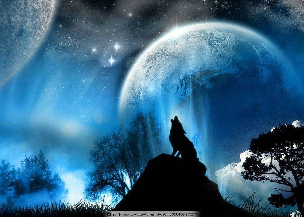 狼月夜 狼 蓝色 星空 月色