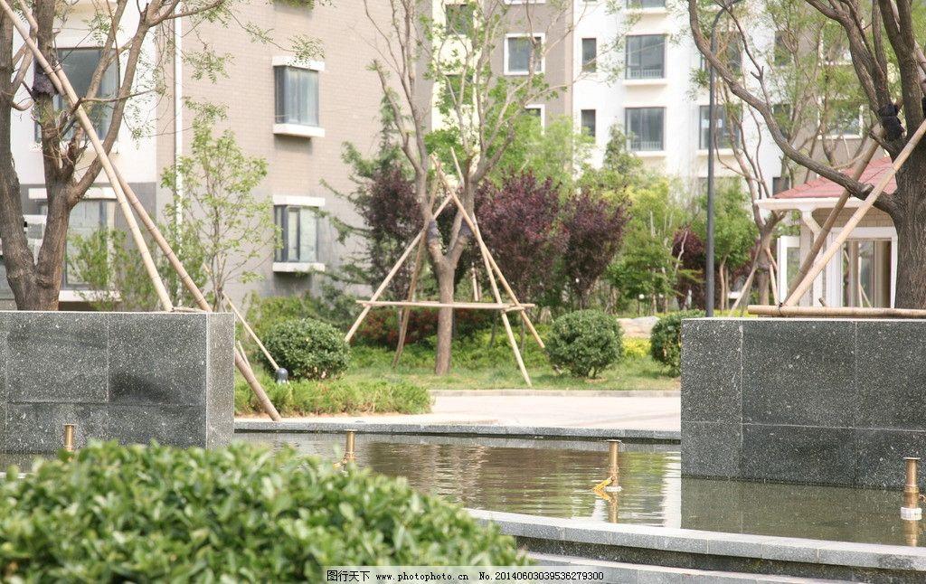 小区园林 小区 台阶 绿植 园林 水景 园林建筑 建筑园林 摄影 72dpi j