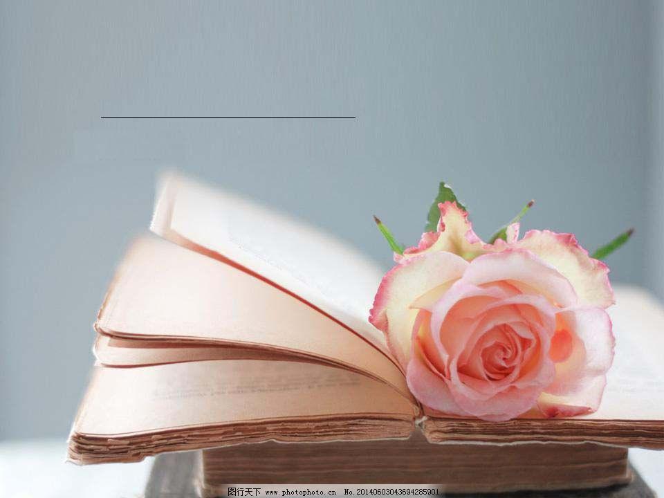 玫瑰书香ppt图片