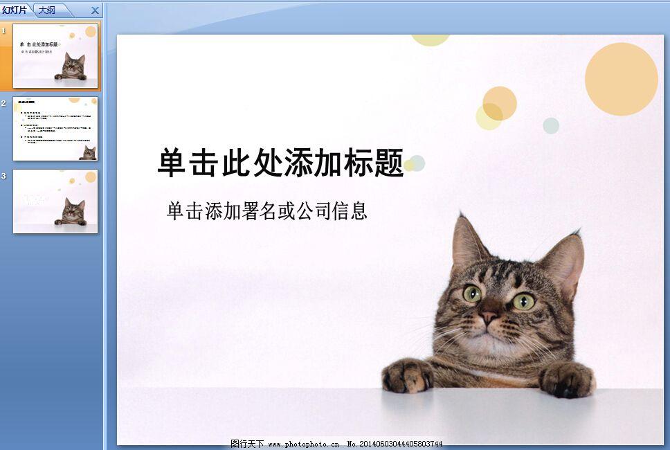 宠物护理ppt模板下载 动物 小猫