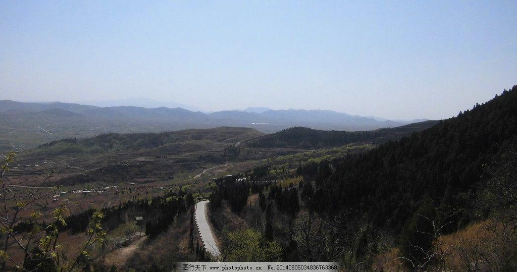 马山 山路 柏树 枯草 远山轮廓 初春 济南长清 长清风光 自然风景