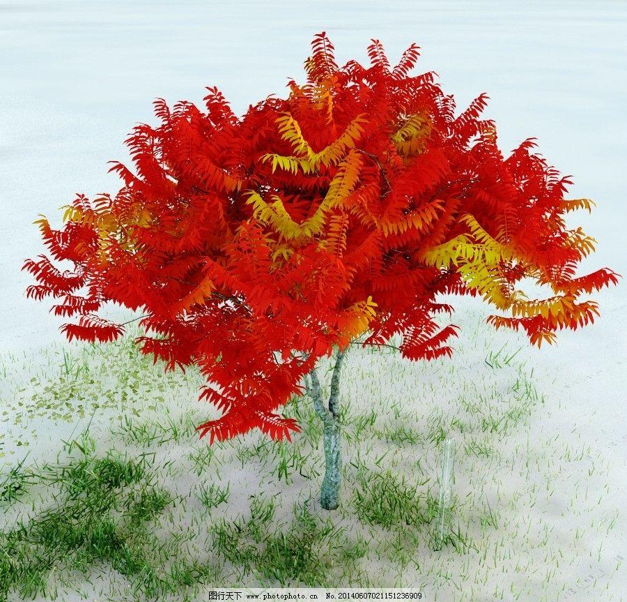 园林植物 景观植物 盆栽 景观模型 重制版单体模型合辑 室内模型