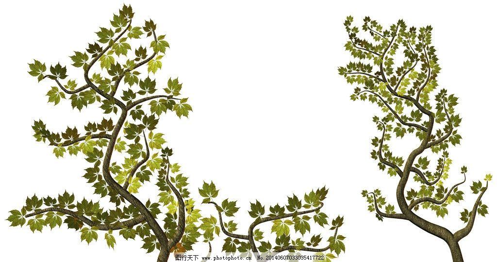 大树 树 松树 植物 绿色 树集合 单棵树 树素材 集合 枯树 各种树