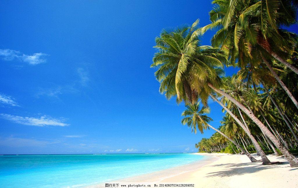 马尔代夫风景图片 马尔代夫 蓝天白云 海边 海滩 椰子树 自然风景
