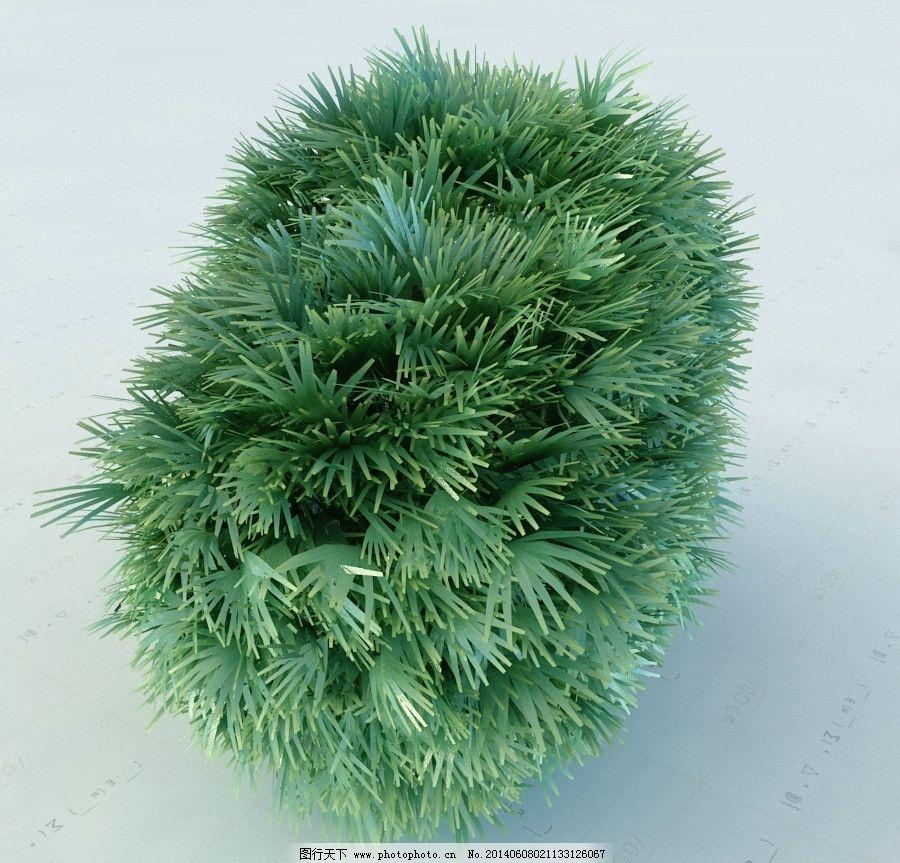 景观植物 园林植物 单体模型 重制版单体模型合辑 室内模型 源文件