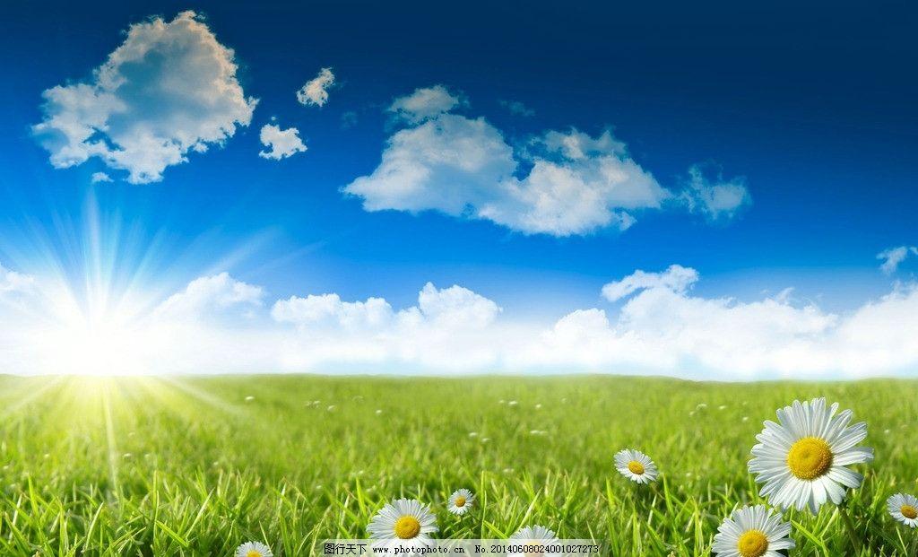 蓝天白云草地鲜花 蓝天 白云 草地 鲜花 阳光 风景 风光 美景 自然
