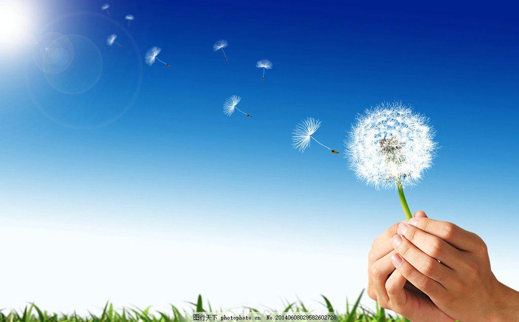 蒲公英保护环境广告,绿色 草地 草原 环保 大自