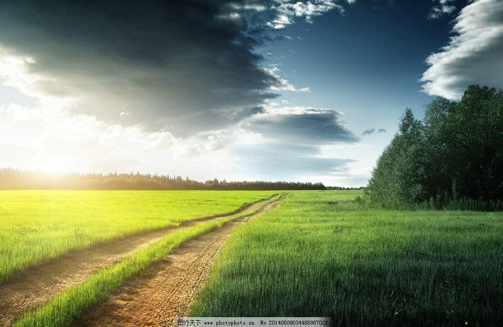 阳光白云蓝天 太阳穿过乌云 照耀 马路 绿草 大树 山水风景 自然景观