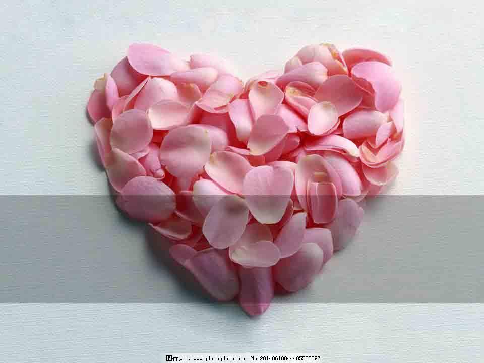 粉红花瓣ppt模板