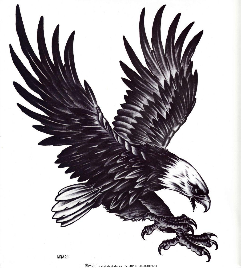 手绘 纹身 雄鹰 雄鹰 手绘 纹身 psd源文件 其他psd素材