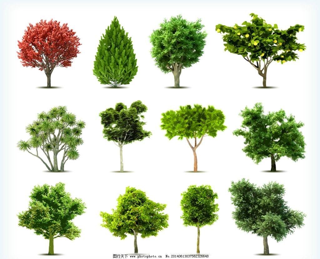 卡通树 春天树木 绿树 绿叶 四季树木 树剪影 树木剪影 手绘树 可爱