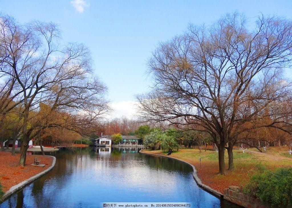 秋景 秋天 秋季 公园 摄影 森林公园 湖面 自然风景 自然景观 350dpi