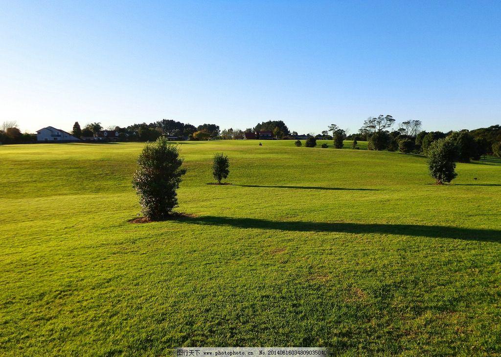 新西兰风光 蓝天 白云 绿树 绿地 草地 阳光 农场 自然风景 自然景观