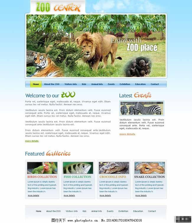 狮子老虎动物园管理网页模板