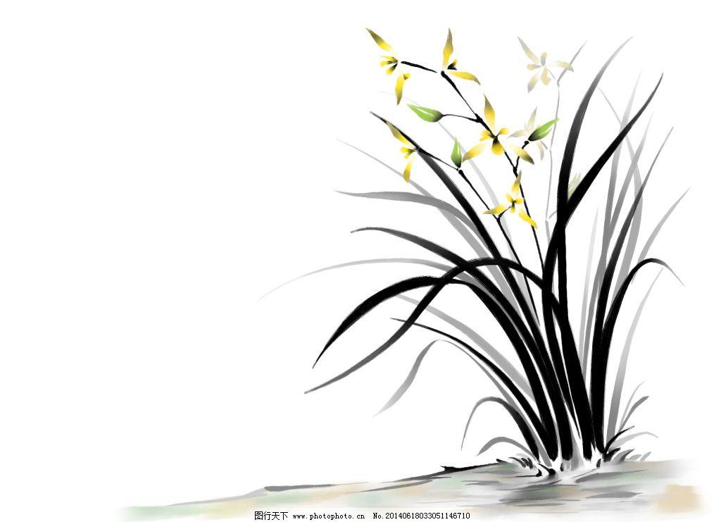 彩铅兰花画法步骤图