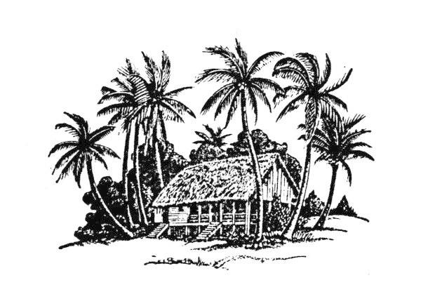 手绘的椰子树和房子矢量