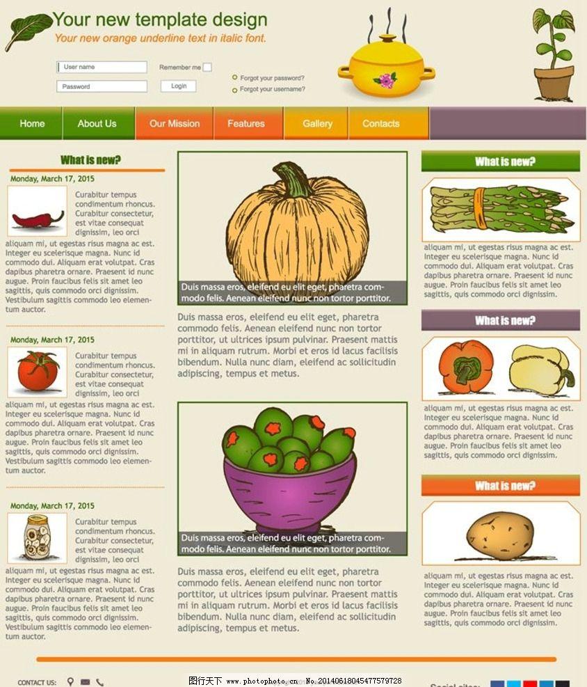 网站网页模板设计图片